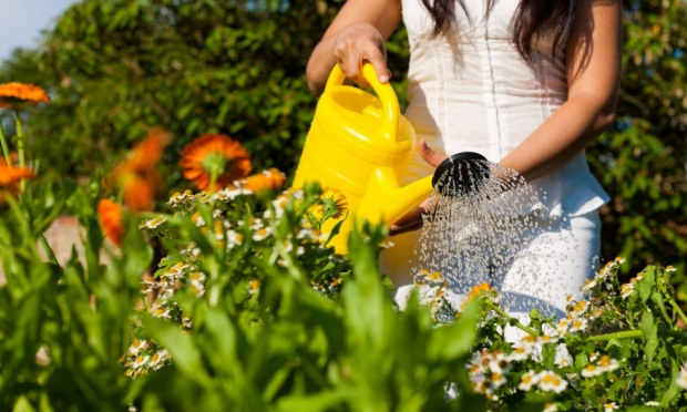 Cuidar-de-Flores-Traz-Beneficios