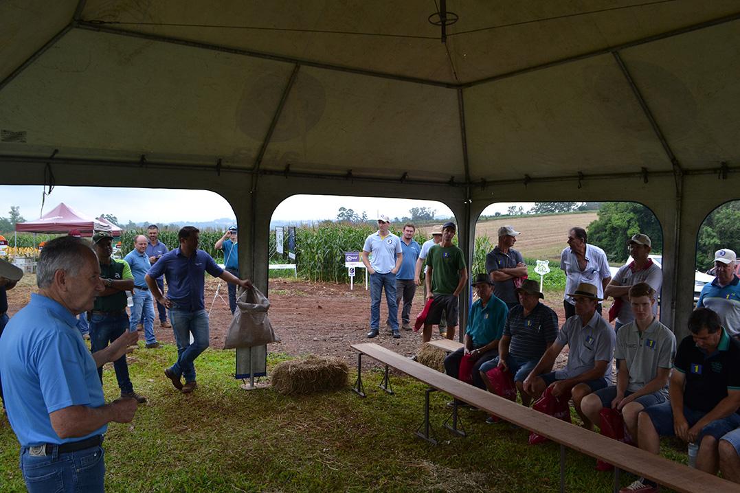 Dia de Campo evidencia genética e nutrição do milho