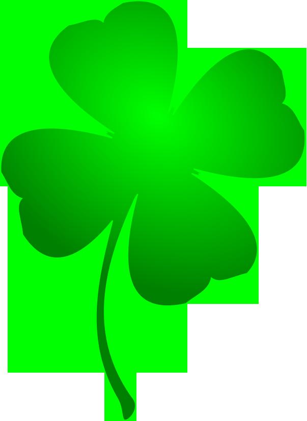 St. Patrick's Day ganha celebrações pelo Vale