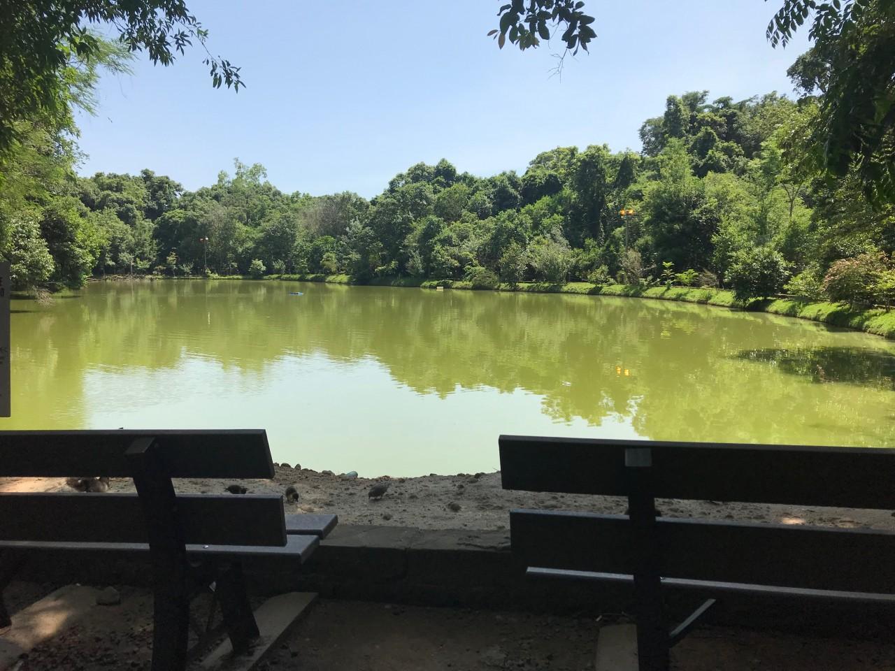 Parque do Engenho passa por revitalização