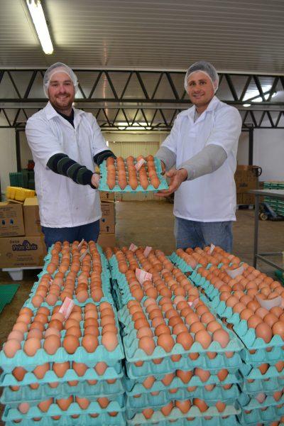 Demanda por ovos dispara em meio à quarentena