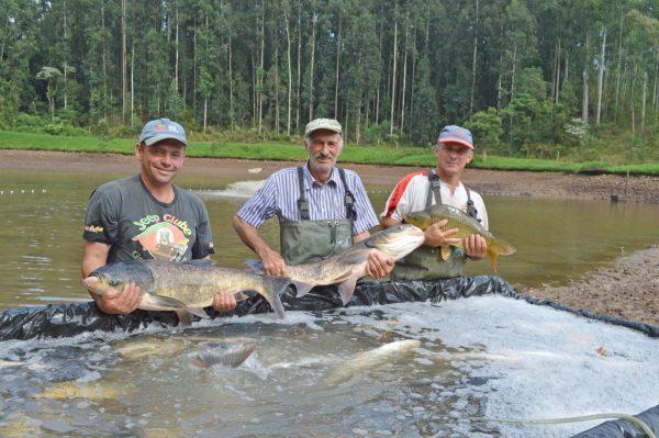 Após seis meses, Feira do Peixe Vivo retorna