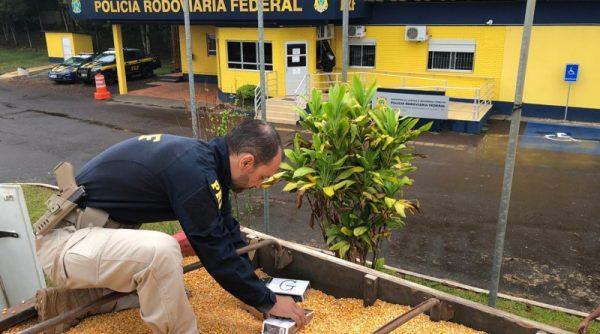 PRF apreende cigarros escondidos em carga de milho em Lajeado