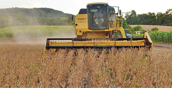 Valor da produção agrícola recua 5,53% em 2020, aponta IBGE