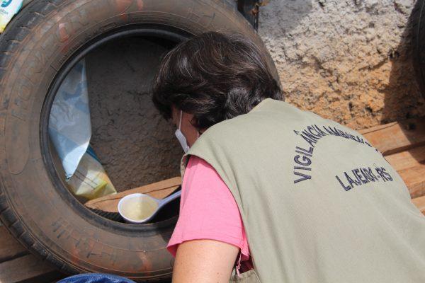 Casos de dengue dobram no Vale do Taquari