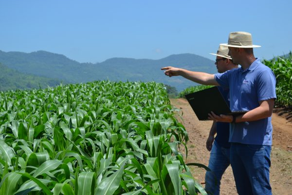 Lançamento de plataforma digital para o agro ocorre no dia 20 de abril