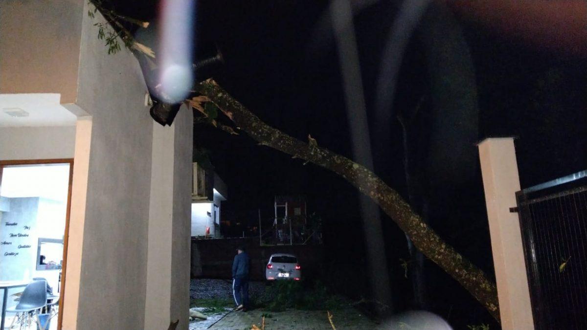 Temporal causa estragos na região e deixa clientes sem energia elétrica