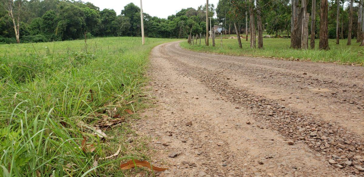 Comunidade exige asfaltamento no bairro Conservas